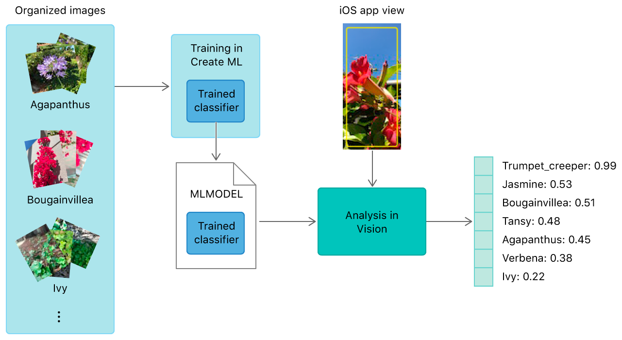 hight resolution of block diagram showing how images used to train a create ml model help classify images in