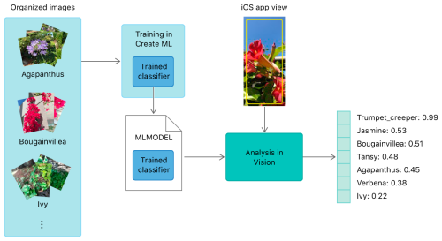 small resolution of block diagram showing how images used to train a create ml model help classify images in