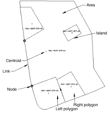Creating a Polygon Topology