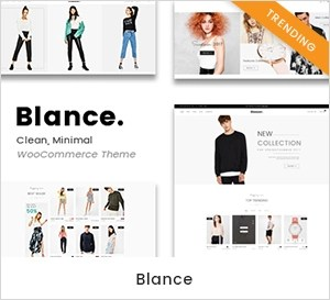 Clean, Minimal WooCommerce WordPress Theme