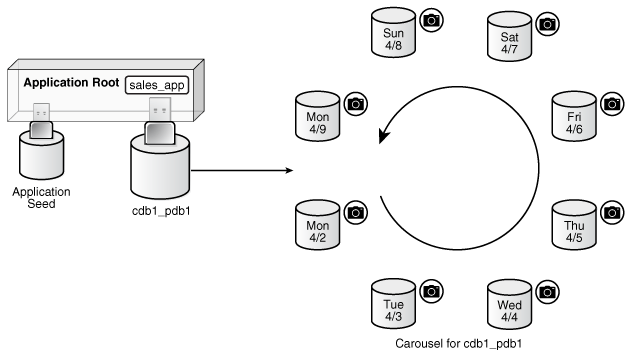Administering a PDB Snapshot Carousel