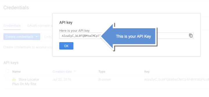 Google API Key Step 4