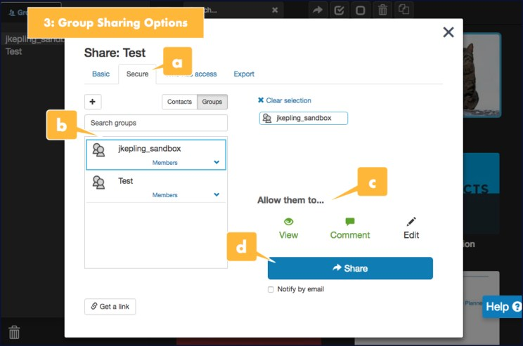 Screenshot showing options for sharing a presentation with a group