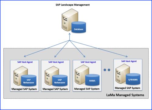 small resolution of sap landscape management