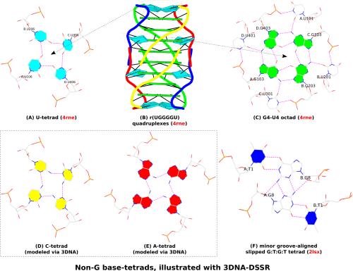 small resolution of dssr derived non g base tetrads