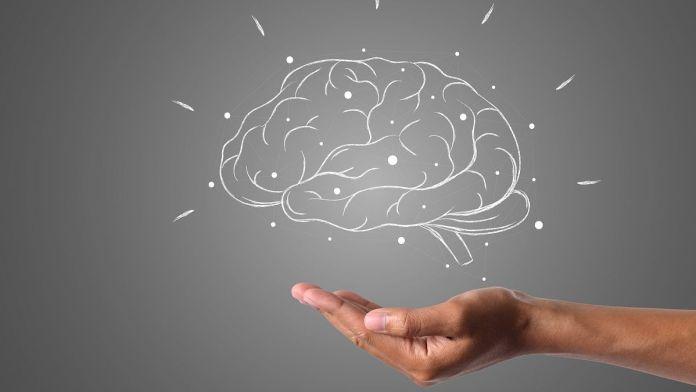 Las razones por las que el cerebro nos sabotea (Foto: Pixabay)