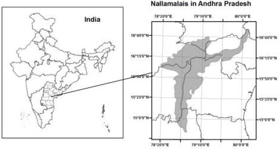 Vegetation and Floristic Studies in Nallamalais, Andhra