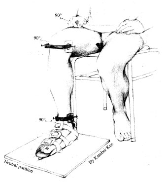 A New Clinical Design Measuring the Vertical Axial
