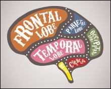 If you lobes don't stop fighting I'll turn this brain around!