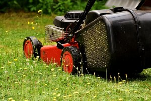 lawnmower mowing the grass