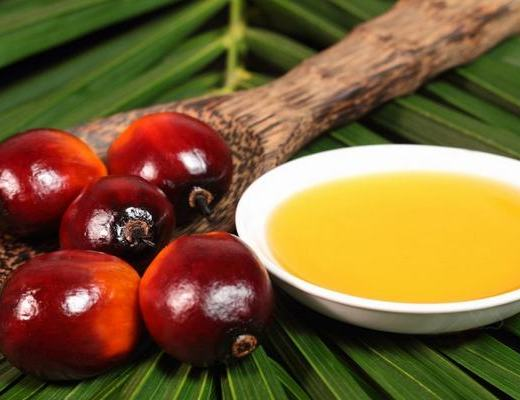 fruits huile de palme