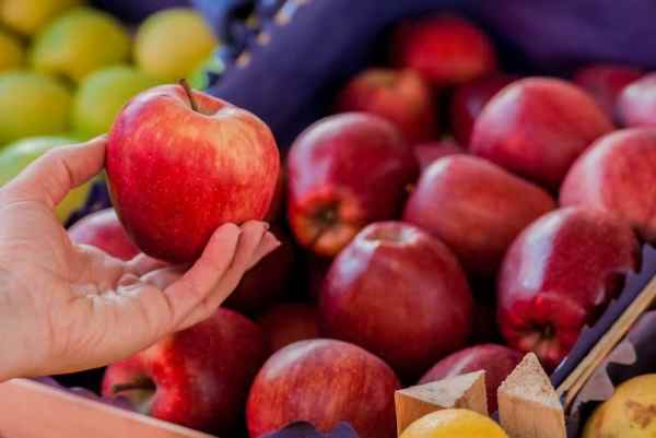 alimentation de saison et santé