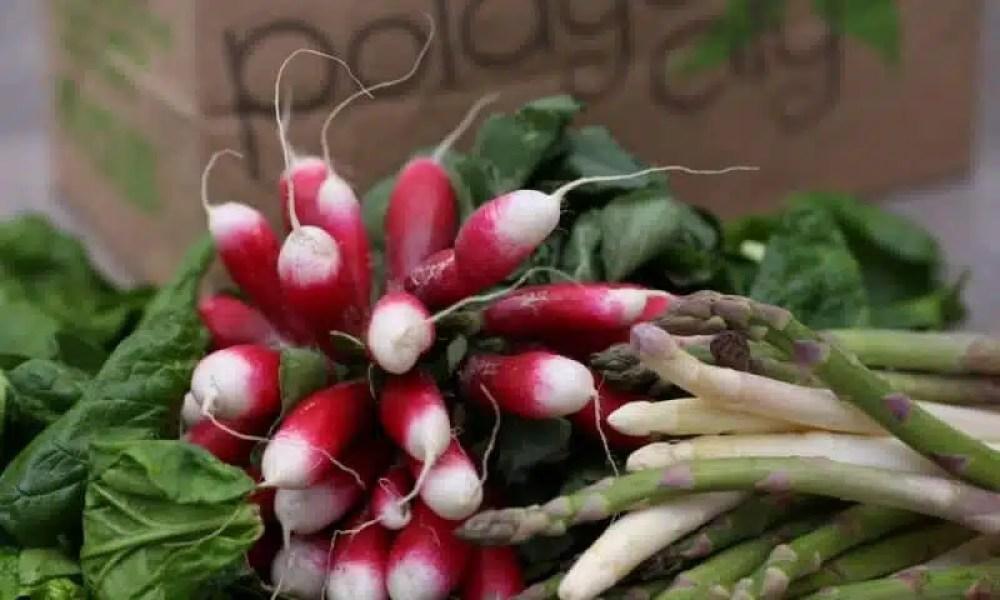 paniers fruits et légumes potager city