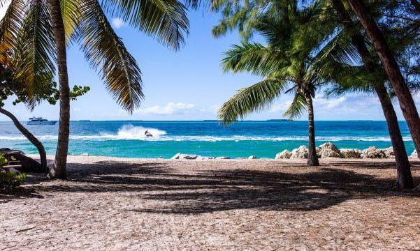 ハワイ旅行に行くならハワイアン航空がおすすめな理由