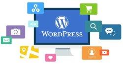 Realizzazione siti WordPress per professionisti, blogger e PMI