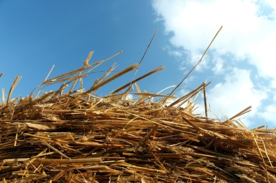 straw hay and blue sky
