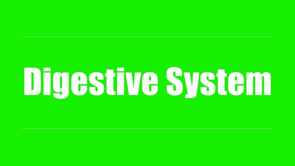 Fix your digestive system in one month