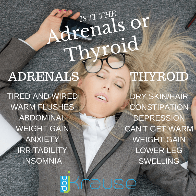 Is It The Adrenals or Thyroid?