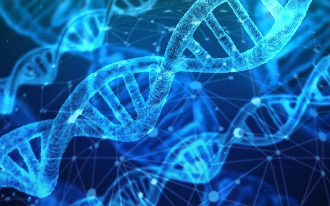Can Genetic Testing Help You Lose Weight?