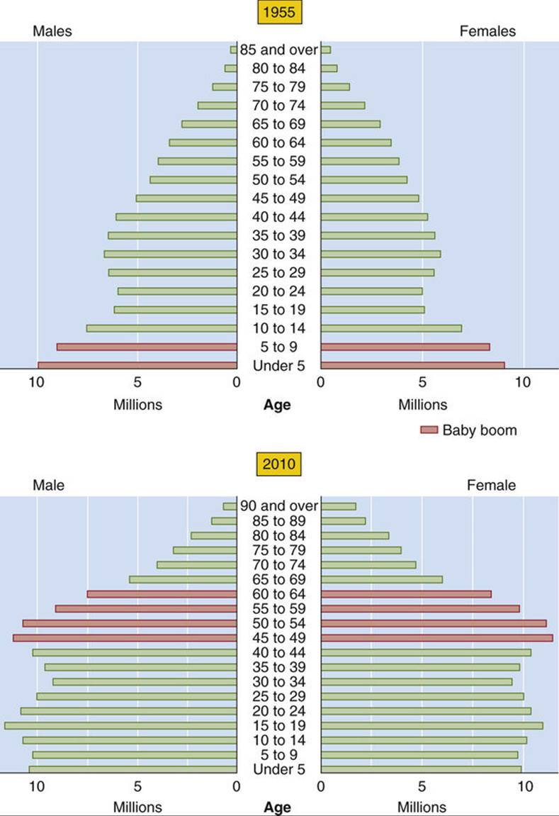 medium resolution of this trend in age structure is projected to continue fig 62 1 moreover because women have a greater life expectancy they comprised 70 5 of the