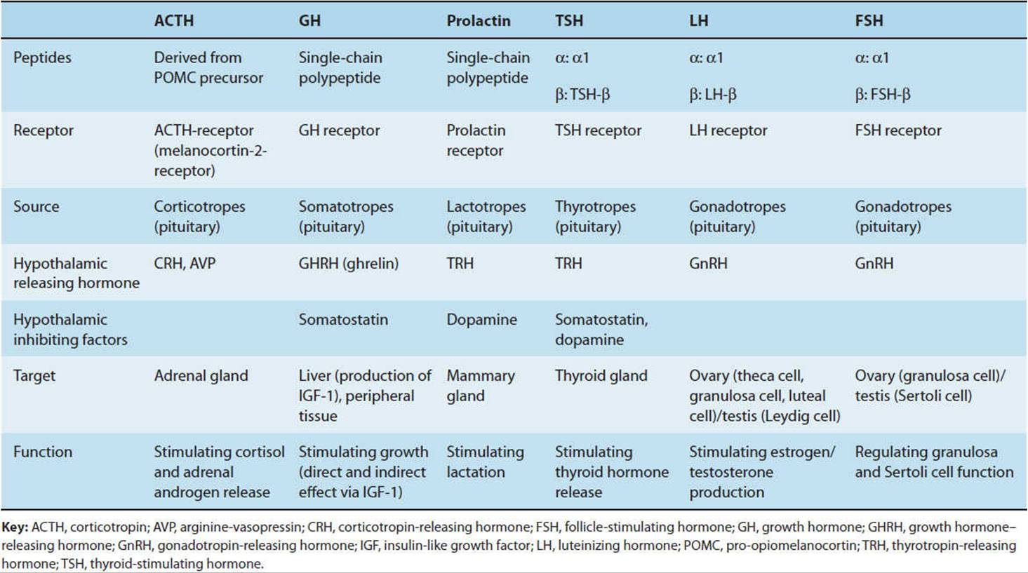 Disorders Of The Hypothalamus Amp Pituitary Gland