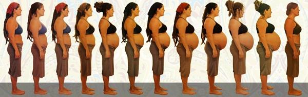 Беременность двойней рекомендации будущим мамам и основные опасности