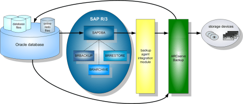 small resolution of arcserve backup for unix and linux enterprise option for sap r 3 sap r 3 modules diagram