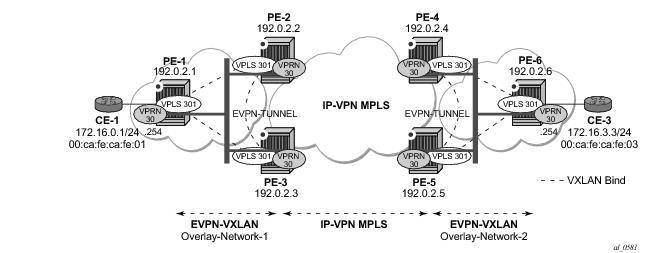 EVPN for VXLAN Tunnels (Layer 3)