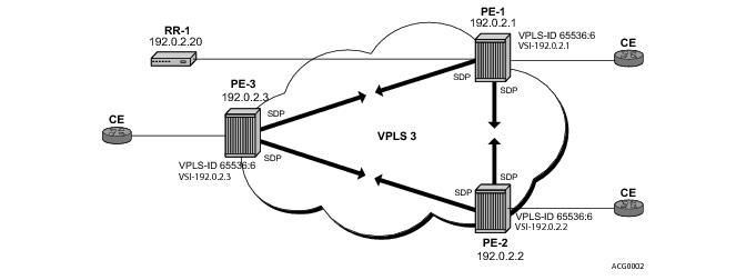 LDP VPLS using BGP-Auto Discovery