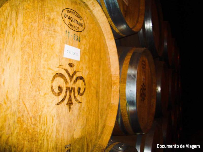 Passeios vinícolas Chile
