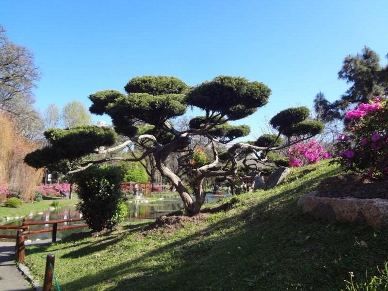Parques argentinos