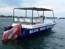 blue-deep-diving-sri-lanka-4