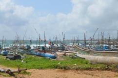 dodandduwa-sri-lanka
