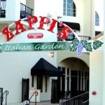 Zappi's sign