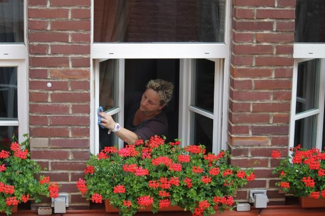 Clean the windows on a regular basis