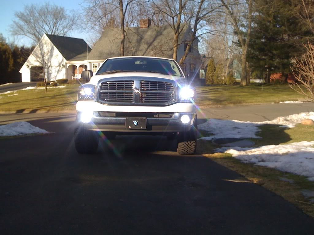 hight resolution of halo projector headlights w hid and hid fog lights sold projector halo fog lights wiring dodgeforumcom