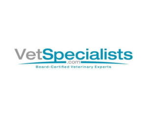 vetspecialsts-feature-300sq-13kb.jpg?fit=300%2C240&ssl=1