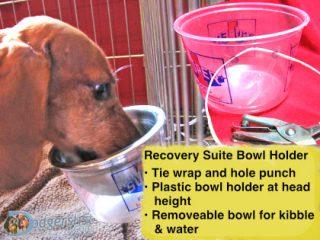 home IVDD neck care DIY bowl