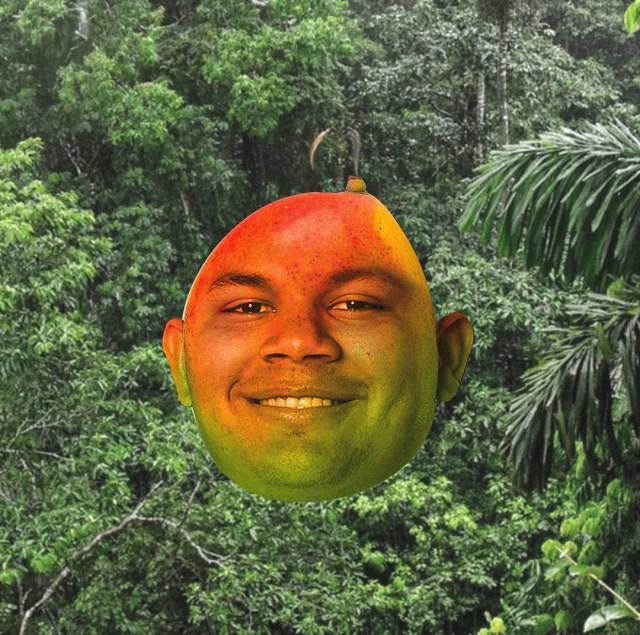 Our Mango Son