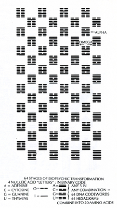 "I Ching as description of Genetic Code (diagram from ""Earth Ascending"" Jose Arguelles."