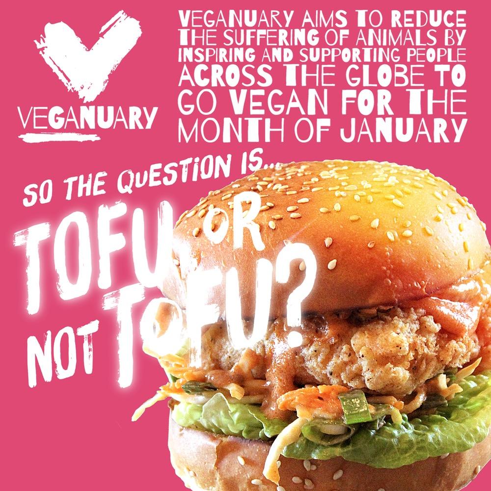 Tofu Or Not Tofu
