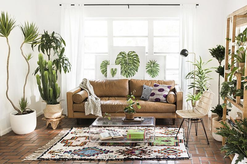 Sala de estar com tendência urban jungle
