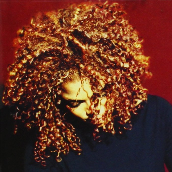 cds-_0014_manijeh-janet-jackson-the-velvet-rope