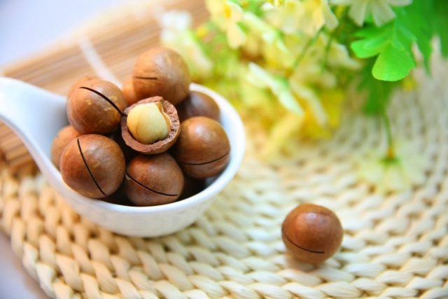 macadamia olie kopen