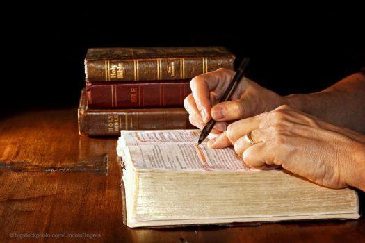 Anatomical Bible Words