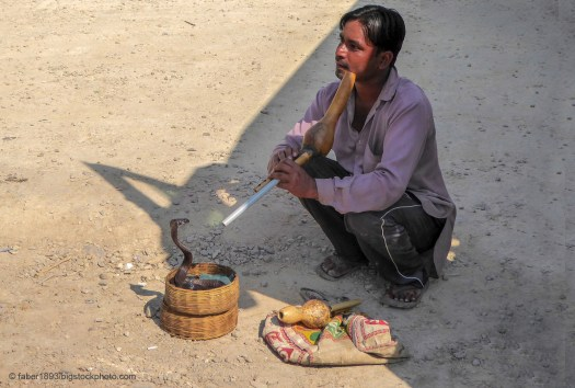 Snake Charmers, Monsters, Hoaxes