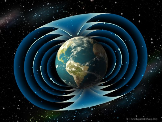 Magnetism and Life