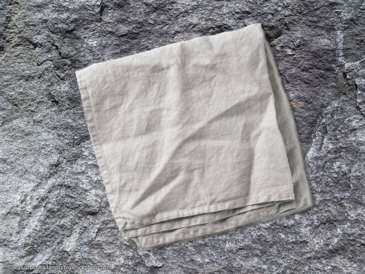 Hidden Messages in the Bible - The Napkin