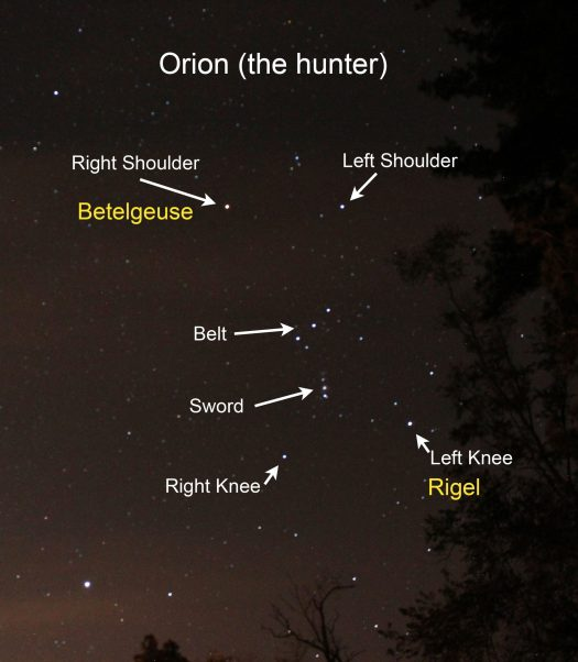 Watching Betelgeuse in Anticipation