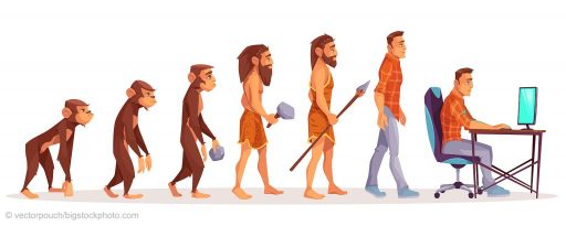 Teaching Human Evolution